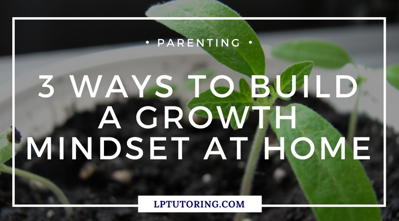 3 Ways to Build a Growth Mindset at Home