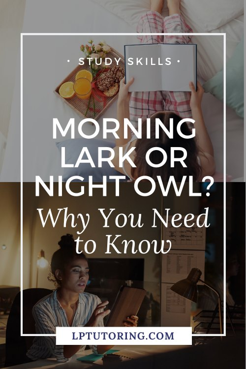 Morning Lark or Night Owl? Why It\'s Important to Know