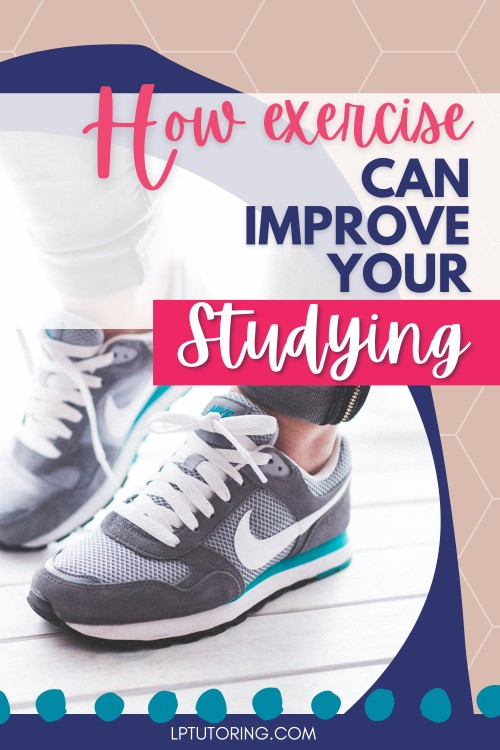 Why Exercise is So Important For Learning